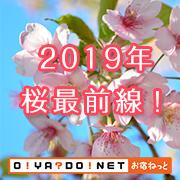 2019年 桜最前線!